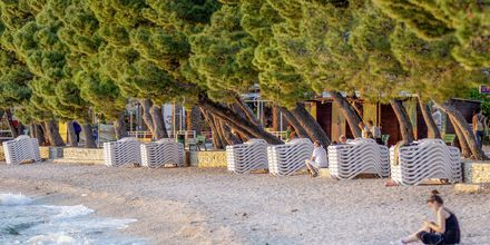 Stranden vid hotell Park i Makarska.