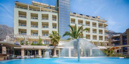 Poolen på hotell Park i Makarska.