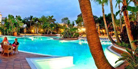 Pool på hotell Park Club Europé på Teneriffa.