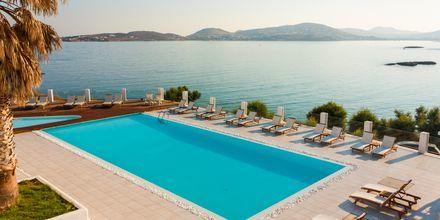 Pool på hotell Paros Bay på Paros i Grekland.