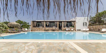 Poolområdet på hotell Parosland.