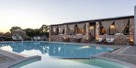 Poolbaren på hotell Parosland.