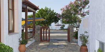 Hotell Pelagos Beach i Votsalakia på Samos, Grekland.