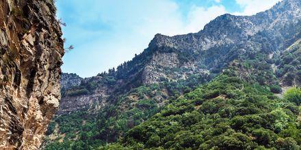 Berg nära Kalamata, Peloponnesos, Grekland.