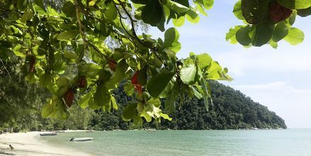 Penang, Malaysia, är känt för sin makalösa natur och fina stränder.