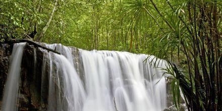 Vattenfallet Suoi Tranh på Phu Quoc i Vietnam.