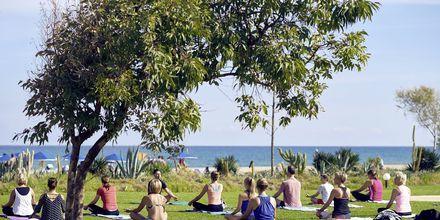 Yoga på hotell Pilot Beach i Georgioupolis på Kreta, Grekland.