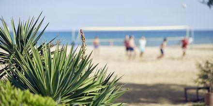 Stranden vid hotell Pilot Beach i Georgioupolis på Kreta, Grekland.
