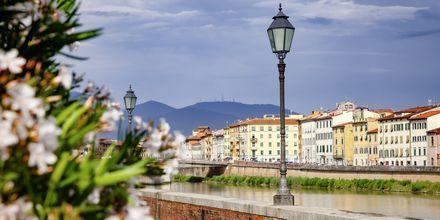 Pisa i Toscana, Italien.
