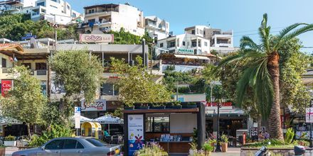 Platanias på Kreta, Grekland.