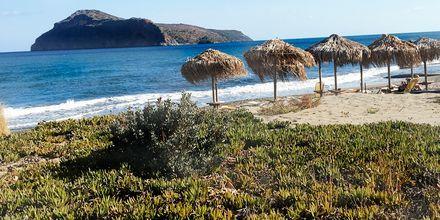 Stranden vid hotell Platanias Ariston i Platanias, Kreta.