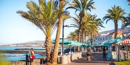 Strandpromenaden i Playa de las Americas på Teneriffa.
