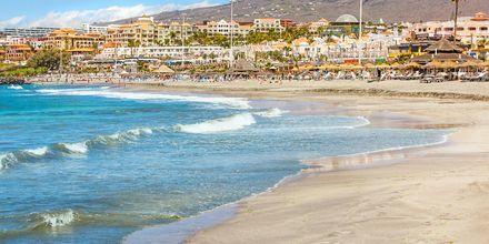 Playa de las Americas på Teneriffa, Spanien.