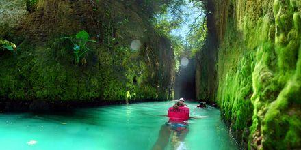 Natur- och djurparken Xcaret på Riviera Maya.