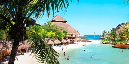 Playacar i Playa del Carmen på Riviera Maya i Mexiko.