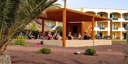 Yoga på Playitas Resort
