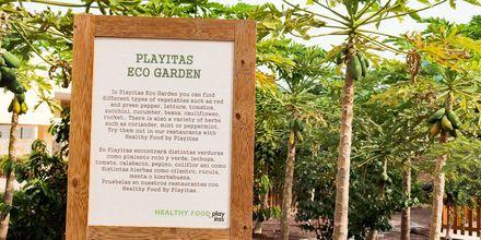 Playitas Eco Garden