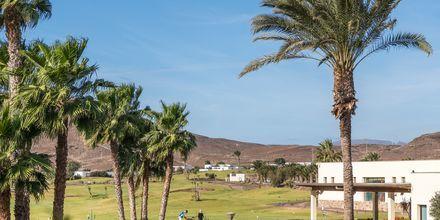 Golf på Playitas Resort