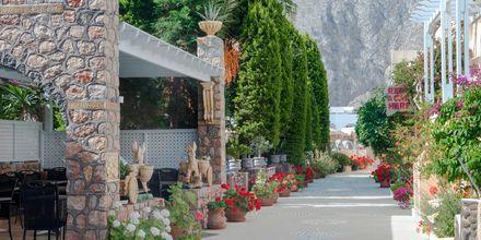 Vackra och gröna omgivningar vid hotell Polydefkis i Kamari, Santorini, Grekland.