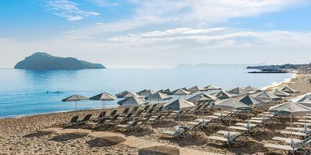 Strand på hotell Porto Platanias Luxury Selection.