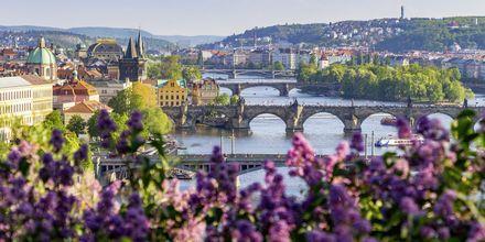 Prag, Tjeckien, ett fantastiskt mysigt weekendresmål.