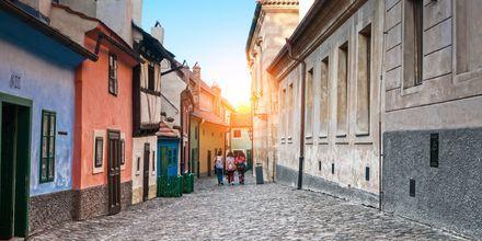 Golden Lane i Hradčany, Prag.
