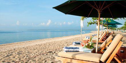 Stranden vid hotell Prama Sanur Beach, Bali.