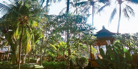 Hotell Prama Sanur Beach, Bali.