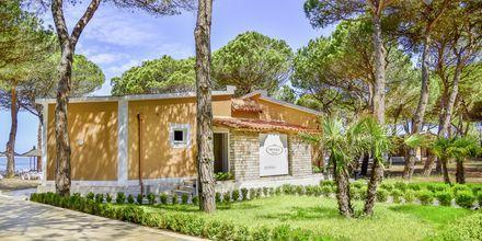 Reception på Prestige Resort, Durres riviera, Albanien.