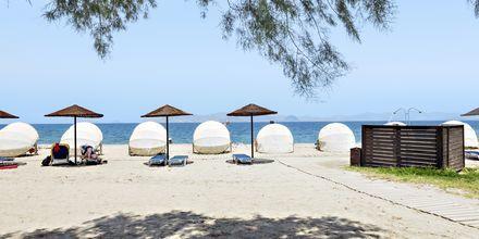 Strand vid hotell Kipriotis Maris Suites i Psalidi på Kos, Grekland.