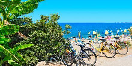 Strand i Psalidi på Kos, Grekland.