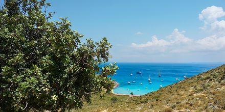 Badviken Vathy på Pserimos, Grekland.
