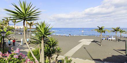 Strand i Puerto de la Cruz på Teneriffa, Spanien.