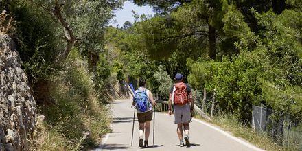 Fina vandringsmöjligheter i Puerto de Sóller på Mallorca, Spanien.