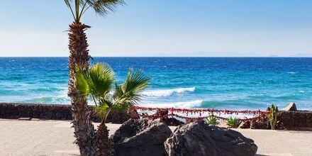 Strandpromenaden i Puerto del Carmen på Lanzarote, Kanarieöarna.