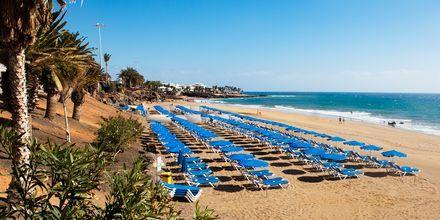 Stranden i Puerto del Carmen på Lanzarote, Kanarieöarna.