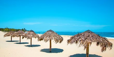 Costa Dorada i Puerto Plata, Dominikanska republiken.