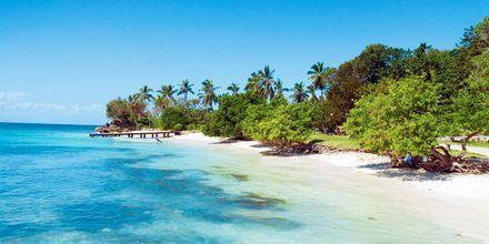 Bacardi Island, Dominikanska republiken.