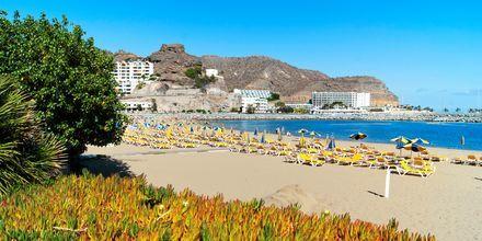 Stranden i Puerto Rico på Gran Canaria, Spanien.