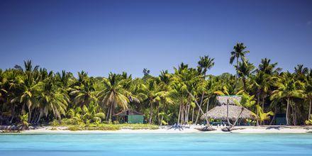 I Punta Cana väntar turkosblått vatten, pudervita stränder och vajande palmer...