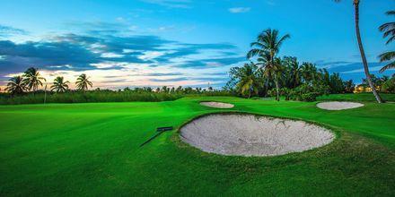Det finns gott om golfbanor i Punta Cana på Dominikanska republiken.