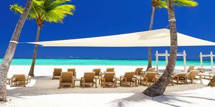 Strand på Dominikanska republiken.