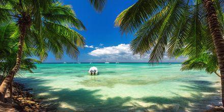 Avkoppling och lugn och ro står på schemat i Punta Cana, Dominikanska republiken.