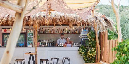 Café vid stranden Psili Ammos i Pythagorion på Samos, Grekland.