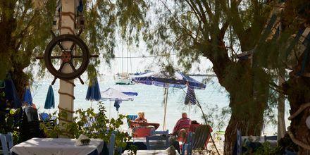 Slå dig ner för en lunch vid stranden.