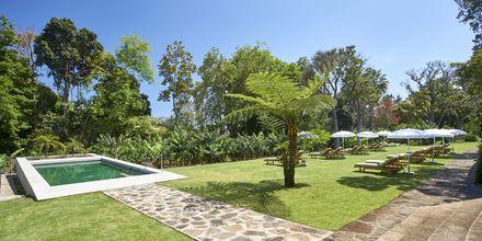 Pool för vuxna på hotell Quinta da Casa Branca i Funchal, Madeira.