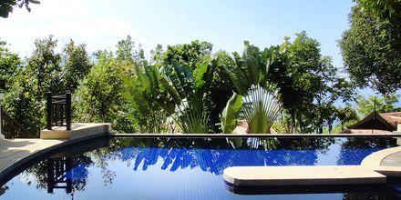 Pool uppe på kullarna på hotell Rawi Warin på Koh Lanta, Thailand.