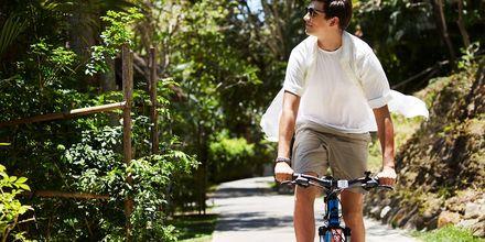 Upplev naturen genom att låna en cykel på hotell Rawi Warin på Koh Lanta, Thailand.