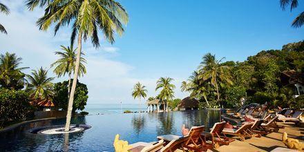 Infinity poolen på hotell Rawi Warin på Koh Lanta, Thailand.