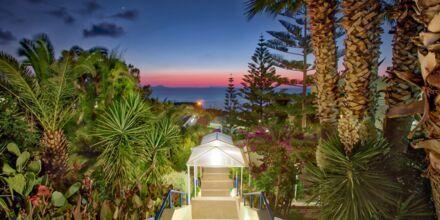 Hotell Rethymno Mare Resort, Grekland.
